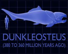 Dunkleosteus and Human Size Comparison Stock Illustration
