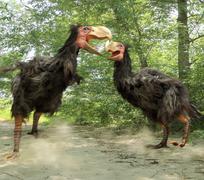 Stock Illustration of Gastornis Fighting (Terror Birds)