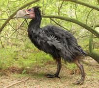 Gastornis In Forest (Terror Bird) Stock Illustration
