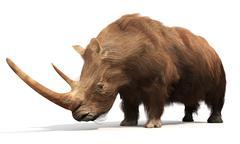 Woolly Rhinoceros - stock illustration