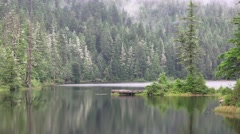 Alaskan Rain Forest, Lake Carlanna Stock Footage