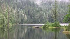 Alaskan Rain Forest, Lake Carlanna - stock footage