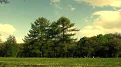 Full Hd timelapse. clouds moving on the sky. Beautiful spring/ summer in park - stock footage