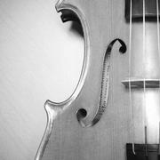Stock Photo of violin black and white color tone style