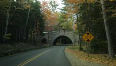 Stanley Brook Bridge, Autumn, Acadia National Park Stock Footage