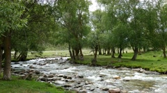 4k – Crystal clear mountain river of Altai 03 Stock Footage