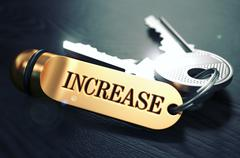 Keys with Word Increase on Golden Label Stock Illustration