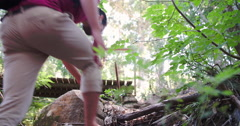Low angle view of group walking in forest, crossing a bridge Stock Footage