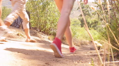 Friends crossing a small bridge in a forest, low angle Stock Footage