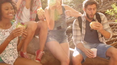 Group of friends sitting having lunch in forest Stock Footage