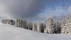 Stock Photo of Winter landscape in the Carpathian mountains