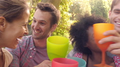 Four friends drinking in the countryside and making a toast Stock Footage