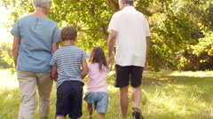 Grandparents walking in the countryside with their grandchildren Stock Footage