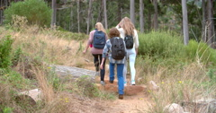 Mother with two kids walking through forest towards camera Stock Footage