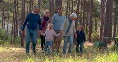 Multi generation family walking in countryside, slow motion - stock footage