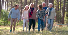 Multi generation family with four siblings walking outdoors Stock Footage