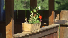 A wooden flowerpot at the Astra Museum in Sibiu Stock Footage