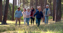 Seniors and grandchildren walking through forest, back view Stock Footage