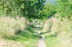 Hiking trail - stock photo