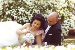 Bride and groom laying on marguerite field Stock Photos