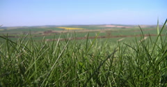 Panoramic View Of Summer Farm Fields With Crops In UK Stock Footage