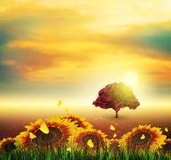 Summer, Field, Tree, Sky, Sun, Sunset, Grass, Sunflowers, Butterflies - stock illustration