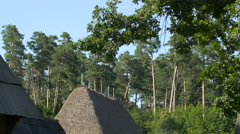 View of a thatched roof and trees at the Open Air Museum, Sibiu - stock footage