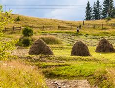 Sheaves of hay in the Carpathians Stock Photos