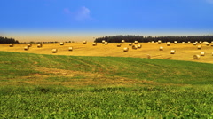 Landscape with harvested bales of straw. Stock Footage