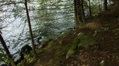 Ripples on Shoreline, Lake Shore with Pine Trees, Camping - stock footage