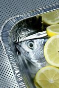 little tunny, tuna, alby, albacore, silver color. - stock photo