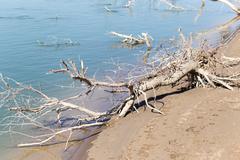 Syrdarya river .Kazahstan - stock photo