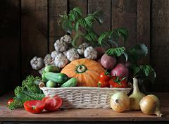Vegetables in a basket. Stock Photos