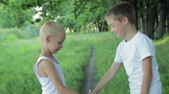 Two boys shaking hands in the park Stock Footage
