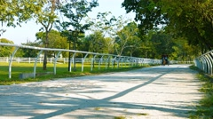 Tourists Ride in a Horse Drawn Carriage at Titiwangsa Lake Garden Park Stock Footage