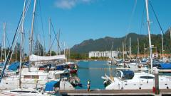 Many luxury sailing boats docked in Langkawi Malaysia's harbor. Stock Footage