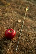 Stock Photo of William tell metaphor with red apple and arrow