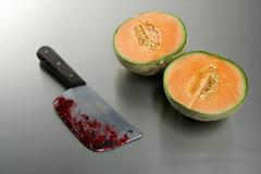 Melon fruit killed by a knife Stock Photos