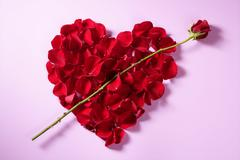 Stock Photo of Red petals heart, valentines flowers metaphor