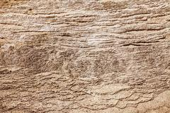 Texture With Layers of Calcium Carbonate Stock Photos