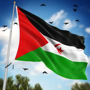 Stock Illustration of Flag of the Sahrawi Arab Democratic Republic