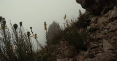 A small patch of rocks overgrown with grass visible in the mountains by fog Stock Footage