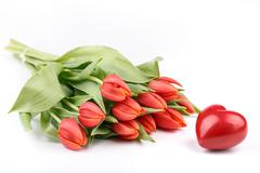 fresh spring tulips - stock photo