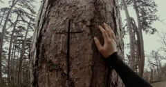 hand girl in black rests on a tree trunk on which is carved a cross close up - stock footage