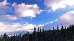 Clouds movement over pine trees, static video. Ukraine, Carpathian mountains, - stock footage