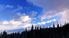 Clouds movement over pine trees, static video. Ukraine, Carpathian mountains. - stock footage