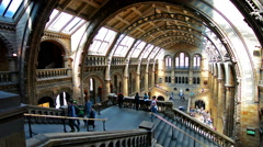 London. United Kingdom. April 2015. Visitors in Natural History Museum Stock Footage