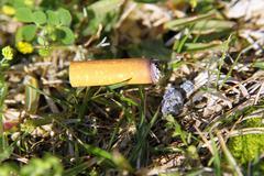 Cigarette fire hazard on forest grass macro detail Stock Photos