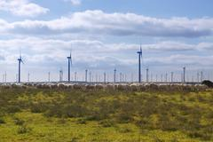 Stock Photo of Ecological electric energy windmills in meadow