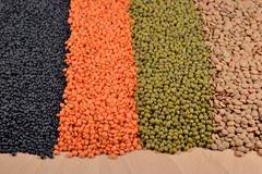 Mixture of lentils and beans Stock Photos